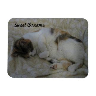 Sleeping Cat-Sweet Dreams Rectangular Photo Magnet
