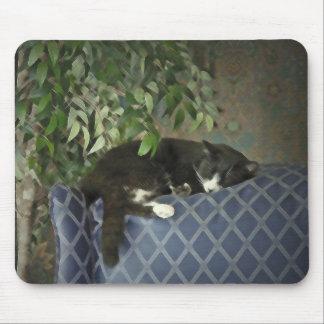 Sleeping Catnap, Kitty Kitten Mousepad
