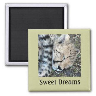 Sleeping Cheetah Cub Photo Magnet