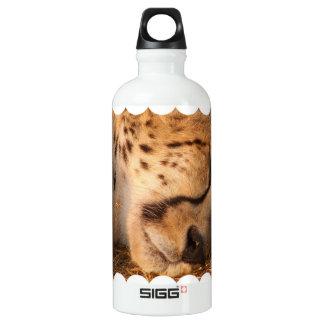 Sleeping Cheetah SIGG Traveler 0.6L Water Bottle
