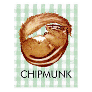 sleeping chipmunk postcard