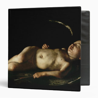 Sleeping Cupid, 1608 Binder