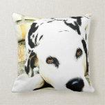 Sleeping Dalmatian Pillow
