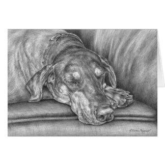 Sleeping Doberman Dog Drawing by Kelli Swan Cards