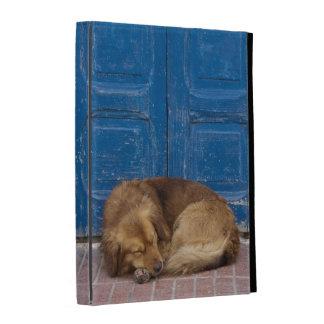 Sleeping dog, Essaouira, Morocco iPad Folio Cover
