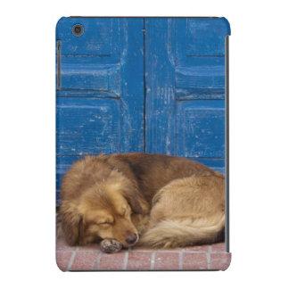 Sleeping dog, Essaouira, Morocco iPad Mini Retina Cases