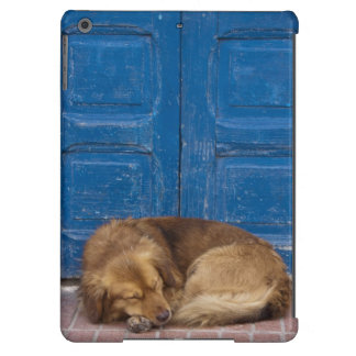 Sleeping dog, Essaouira, Morocco Cover For iPad Air