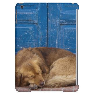 Sleeping dog, Essaouira, Morocco iPad Air Covers