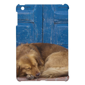 Sleeping dog, Essaouira, Morocco iPad Mini Cases