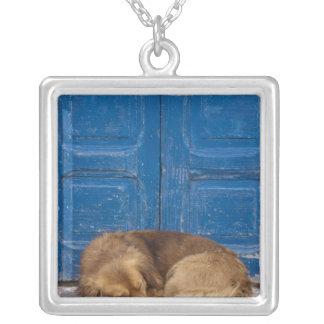 Sleeping dog, Essaouira, Morocco Custom Jewelry