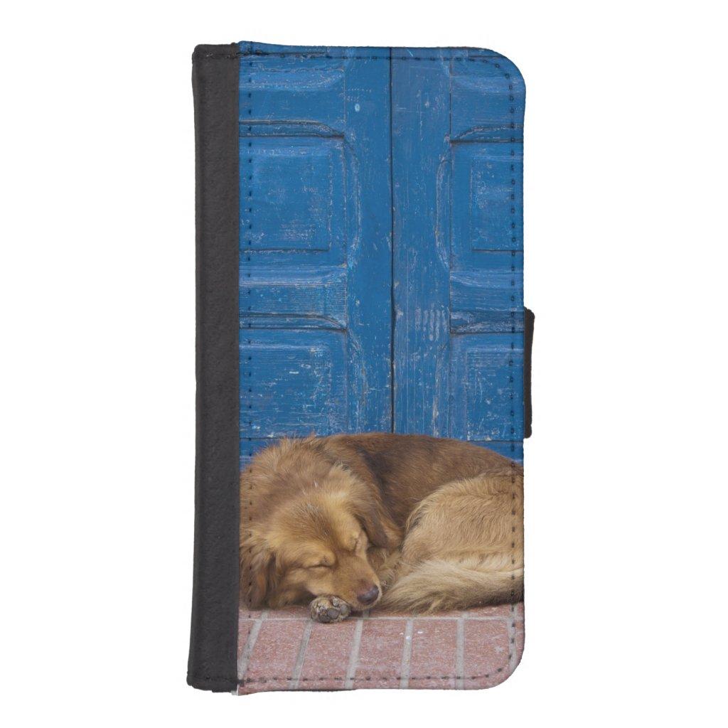 Sleeping dog, Essaouira, Morocco Phone Wallet Cases