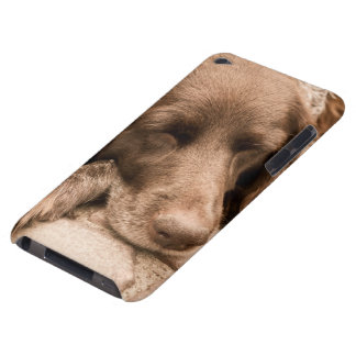 Sleeping Dog in Sepia iPod Touch Cases