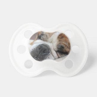 Sleeping Dog Pacifier