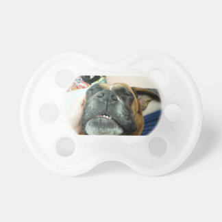 sleeping dog paficier pacifier