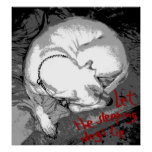 Sleeping dog (poster)