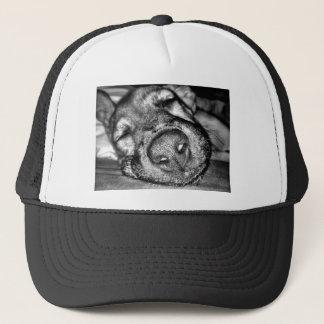 Sleeping dog trucker hat