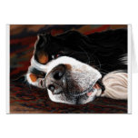 Sleeping Dogs Lie Card
