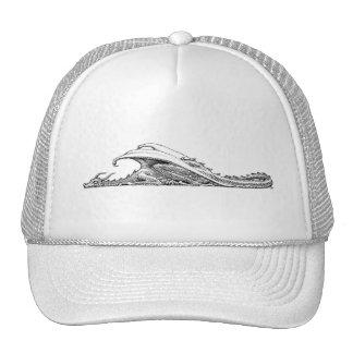 Sleeping Dragon Hat