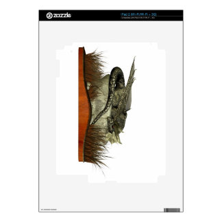 Sleeping Dragon on a Rock Decals For iPad 2