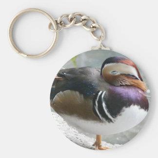sleeping duck basic round button keychain