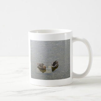 Sleeping Ducks Coffee Mug