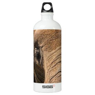 Sleeping Elephant Closeup Aluminum Water Bottle