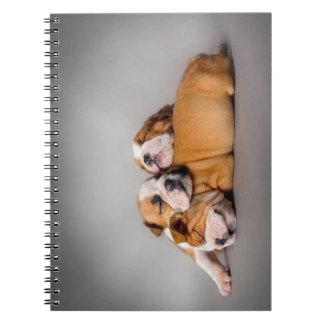 Sleeping English bulldog Spiral Notebook