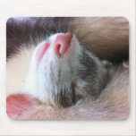 Sleeping Ferret Mousepad