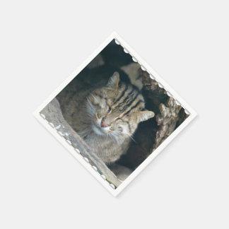 Sleeping Fishing Cat Disposable Napkins