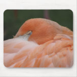 Sleeping flamingo mouse pads