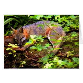 SLEEPING FOX ON A TREE GREETING CARD