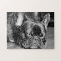 Sleeping French Bulldog Puzzles