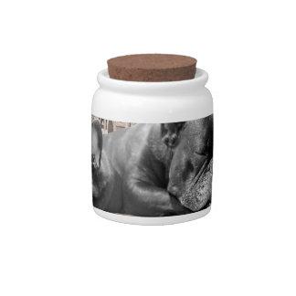 Sleeping French Bulldogs Candy Jar