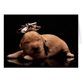 Sleeping Golden Puppy Card