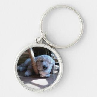 Sleeping Golden Retriever Puppy Keychain