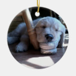 Sleeping Golden Retriever Puppy--Merry Christmas Christmas Ornaments