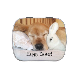 Sleeping Golden Retriever With White Easter Bunny Jelly Belly Candy Tin
