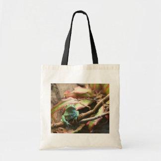 Sleeping green frog color photograph canvas bag