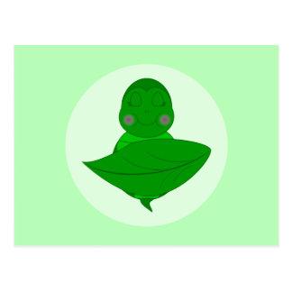 Sleeping Green Turtle Postcards