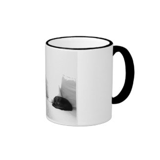Sleeping Grey Cat on White Sofa Coffee Mugs
