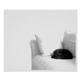 Sleeping Grey Cat on White Sofa Posters
