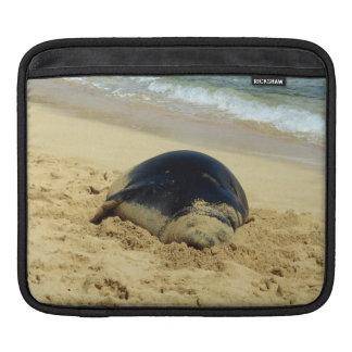 Sleeping Hawaiian Monk Seal iPad Sleeve