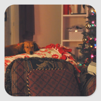 Sleeping Holiday Puppy Square Sticker