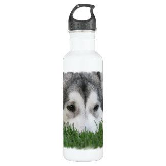Sleeping Husky 24oz Water Bottle