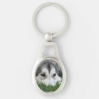 Sleeping Husky Keychain