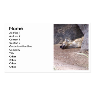 Sleeping Hyena head lying on clay ground picture Business Cards