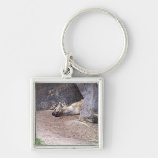 Sleeping Hyena head lying on clay ground picture Keychain