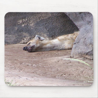 Sleeping Hyena head lying on clay ground picture Mouse Pads