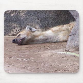 Sleeping Hyena head lying on clay ground picture Mousepads