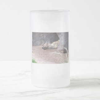 Sleeping Hyena head lying on clay ground picture 16 Oz Frosted Glass Beer Mug